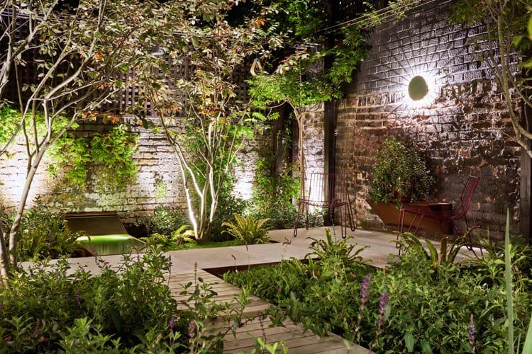 Indian Terrace Garden Plants